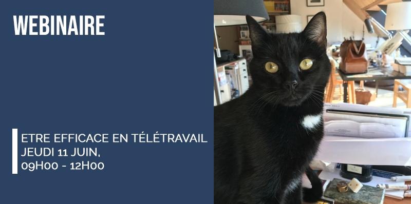 Webinaire - Télétravail